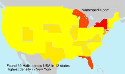 Surname Halis in USA