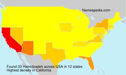 Hamidzadeh - USA