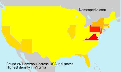 Hamzaoui - USA