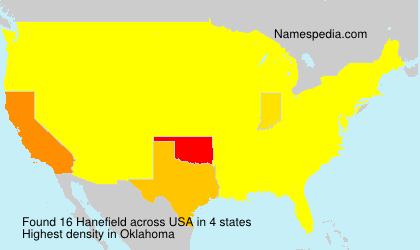 Surname Hanefield in USA