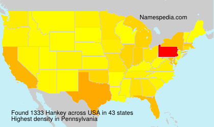Surname Hankey in USA