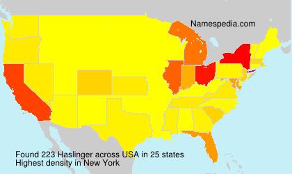 Familiennamen Haslinger - USA