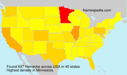 Surname Heinecke in USA