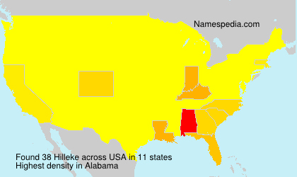Surname Hilleke in USA