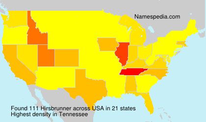 Familiennamen Hirsbrunner - USA