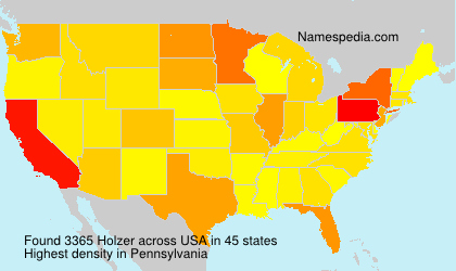Surname Holzer in USA