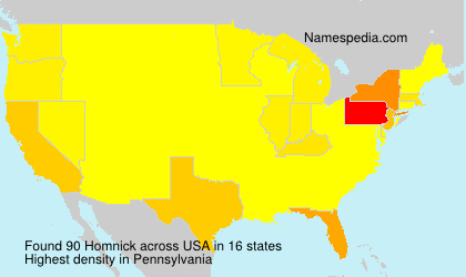 Surname Homnick in USA