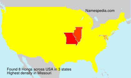Surname Hongs in USA