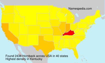 Familiennamen Hornback - USA