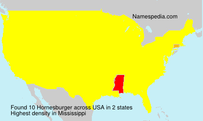 Surname Hornesburger in USA