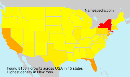 Surname Horowitz in USA