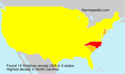 Surname Hulighan in USA