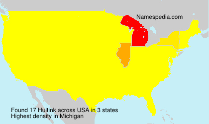Surname Hultink in USA