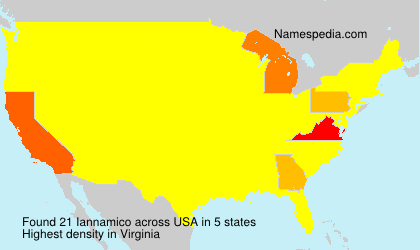 Surname Iannamico in USA