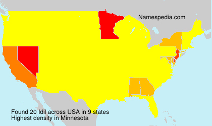 Surname Idil in USA