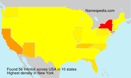 Surname Intintoli in USA