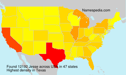 Surname Jesse in USA