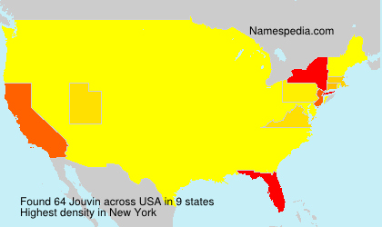 Surname Jouvin in USA