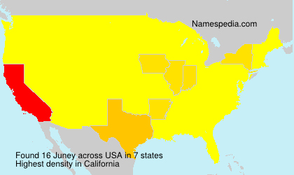 Surname Juney in USA