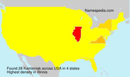 Familiennamen Kamieniak - USA