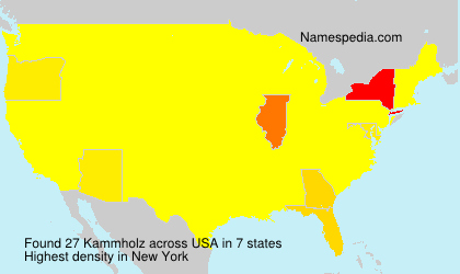 Surname Kammholz in USA