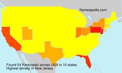 Surname Kankowski in USA