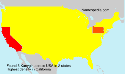 Surname Kanygin in USA