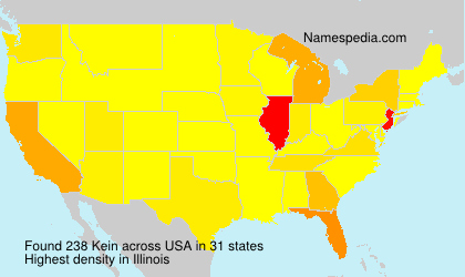 Surname Kein in USA