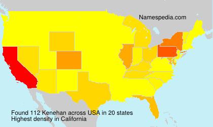 Surname Kenehan in USA