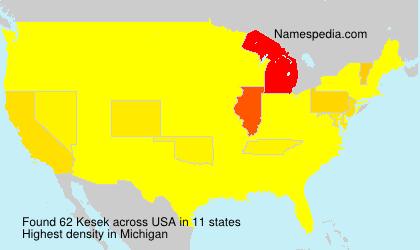 Familiennamen Kesek - USA