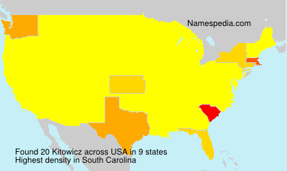 Surname Kitowicz in USA