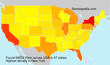 Surname Klein in USA
