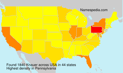 Surname Knauer in USA