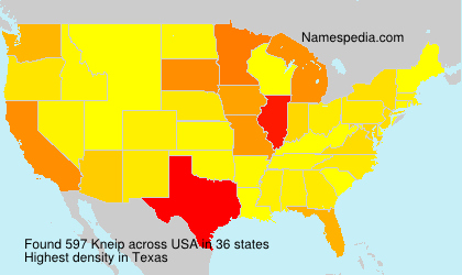 Surname Kneip in USA