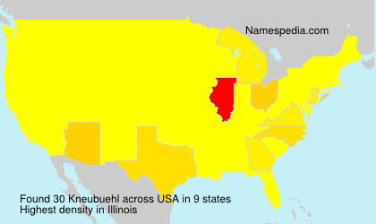 Familiennamen Kneubuehl - USA