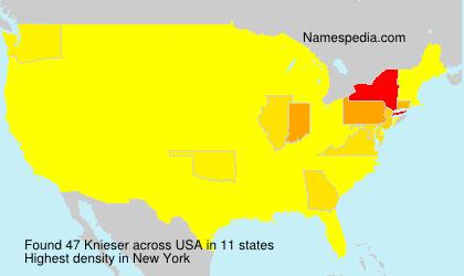 Familiennamen Knieser - USA