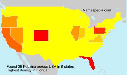 Surname Kobzina in USA
