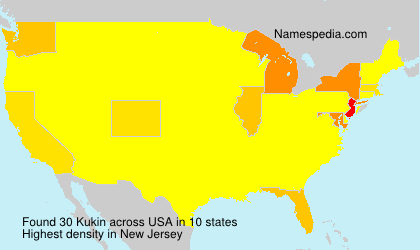 Surname Kukin in USA
