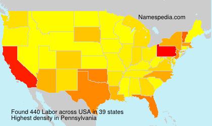 Surname Labor in USA