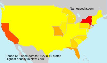 Familiennamen Larice - USA