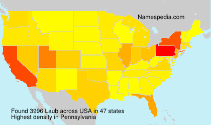 Surname Laub in USA