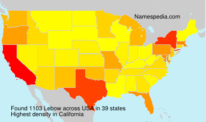 Surname Lebow in USA