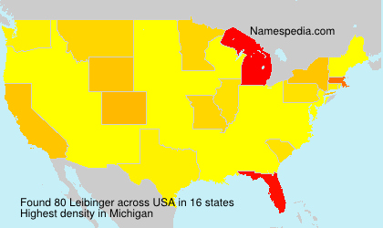Surname Leibinger in USA