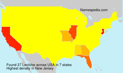 Familiennamen Levitzke - USA