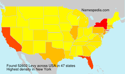 Surname Levy in USA