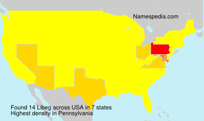 Surname Libeg in USA