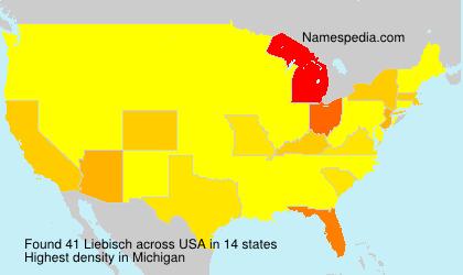 Familiennamen Liebisch - USA