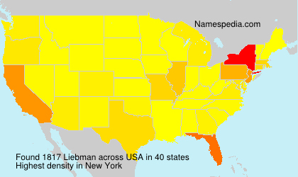 Surname Liebman in USA