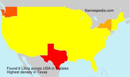Surname Liliza in USA