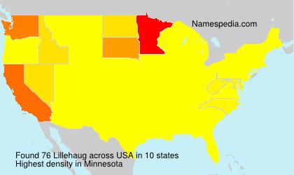 Surname Lillehaug in USA